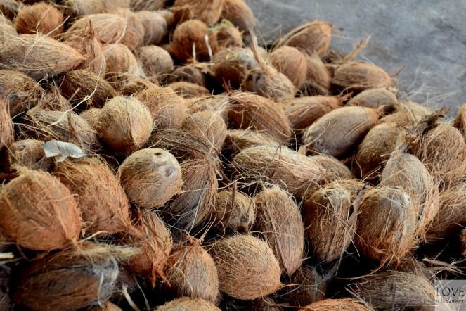 wysuszone kokosy