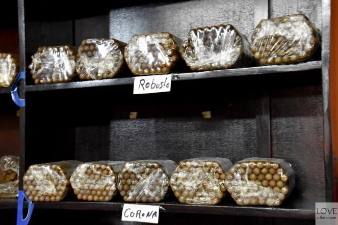 Dominikańskie cygara