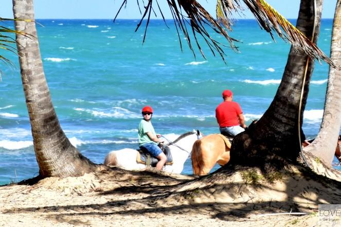 Jadę na koniu... po plaży :)