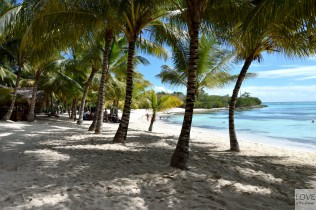 rejs po Morzu Karaibskim - Saona