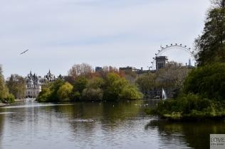 widok z St. James' Parku- Londyn