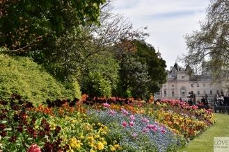 wiosna w St. James' Parku