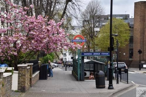 wiosna w Londynie!