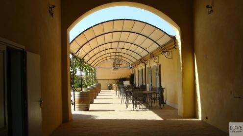 winnica w Prowansji