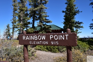 Rainbow Point- Bryce Canyon