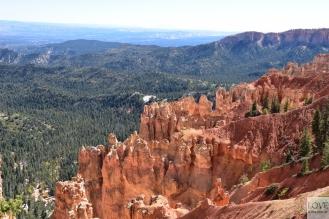 kolorowo w Bryce Canyon !