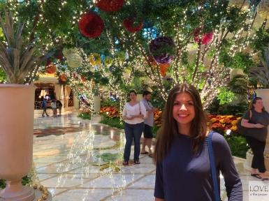 Cudowne ogrody w Las Vegas