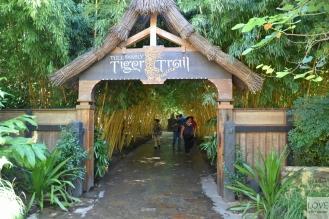 San Diego Zoo Safari Park - Tiger Trail