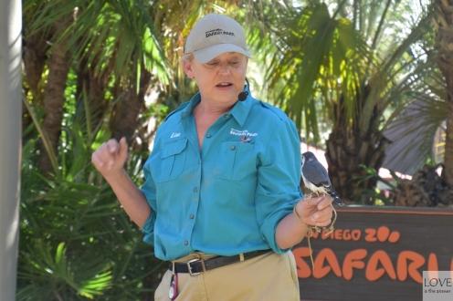 Oddani pracownicy w San Diego Zoo Safari