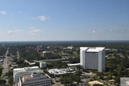 Widok z Kapitolu w Tallahassee