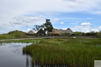 wioska indian w Everglades