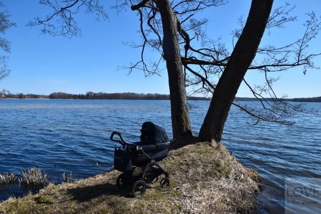 Oliwka nad jeziorem Wulpińskim